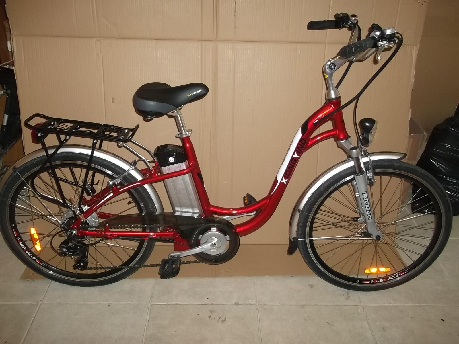 Dutch Style Electric Bike Custom Ebikes